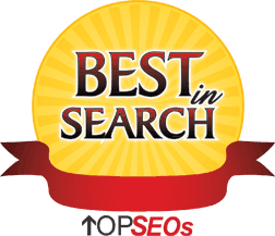 Best In Search | Top SEOs